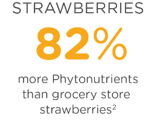Strawberries have 82% more Phytonutrients